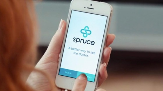 20141103220441-spruce-acne